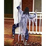 KNL Store 63 Life Size Climbing Zombies Halloween Haunted House Prop Decor (White) (Color: white)