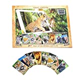 Animal Kingdom Education Book (Augmented Reality) Interactive Animal Books