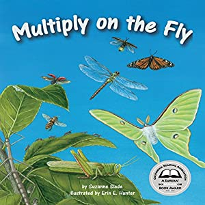 Multiply on the Fly Audiobook