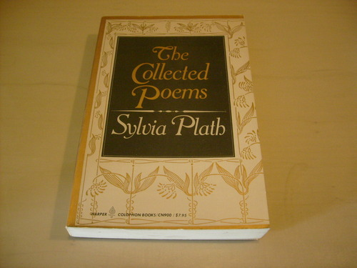 Paralytic - Poem by Sylvia Plath