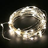 Sanwo string lights 5M 16.5ft 50 LED Starry String Lights Waterproof LED's on a Flexible Silver Copper Wire for Christmas - Outdoor - Patio - Garden - Party Decoration with DC12V 2A Adapter(Warm White)