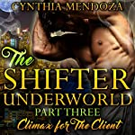 Climax for the Client: Shifter Underworld, Part 3 | Cynthia Mendoza