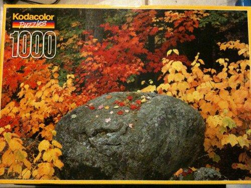 Kodacolor Puzzle Fall Near Eagle Lake