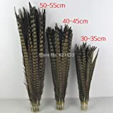 Maslin 100pcs/lot!20-22inches 50-55CM Long Nature Ringneck Pheasant Tail Feather Pheasant Feather for Costume or Hat Design