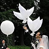 Miyaya® Eco-friendly Biodegradable Helium Balloons, White Peace Dove Balloon for Weddings, Anniversary, Christenings Birthdays and Memorials & Other Occasions- Set of 20