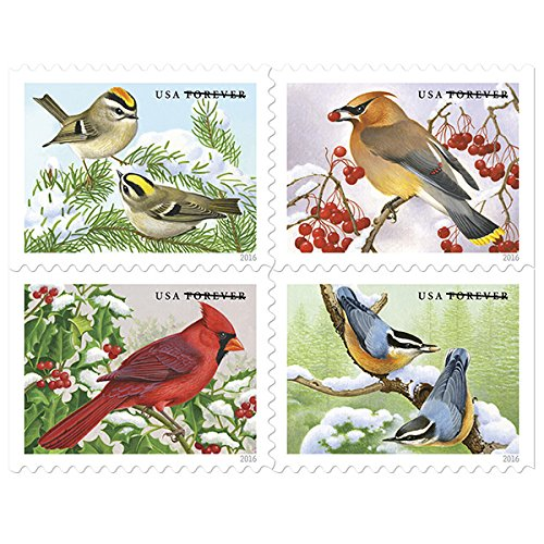 Songbirds in Snow USPS Forever First Class Postage Stamp (1 Book of 20 Stamps) (1 Books of 20 stamps) (Easter Seals Calendar 2015 compare prices)