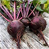 Package of 1,000 Seeds, Detroit Dark Red Beetroot (Beta vulgaris) Non-GMO Seeds By Seed Needs