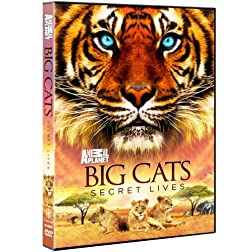 Big Cats: Secret Lives