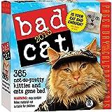 Bad Cat 2015 Daily Desk Boxed Calendar