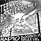 Teenage Bottlerocket And Prototipes (Split EP)