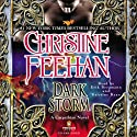 Dark Storm (       UNABRIDGED) by Christine Feehan Narrated by Erik Bergmann, Kristine Ryan