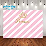 LUCKSTY Royal Princess Pink Birthday Backdrops for Photography 9x6FT Girl Baby Party Banner Photo Backgrounds Wall Paper Photo Booth Props LULF559 (Color: Pink Princess, Tamaño: 9ft x 6ft)