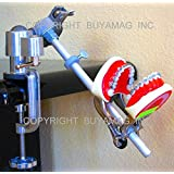 Dental Models ORTHODONTIC MANIKIN TRAINING SIMULATOR MODEL