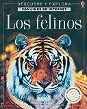 Los Felinos / Big Cats: Internet Linked (Descubre Y Explora) (Spanish Edition) (0746050704) by Miller, Jonathan S.