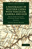 A Naturalist in Western China with Vasculum, Camera and Gun: Being Some Account of Eleven Years' Travel (Cambridge Library Collection - Botany and Horticulture) (Volume 2)
