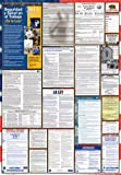 California / Federal Combination Labor Law Posters Spanish Edition (2014)