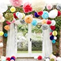 Mcupper-10 Pcs Tissue Paper Pom Poms Paper Flowers Craft For Wedding Party Decor Baby Shower Party Supplies Home Party Outdoor Wedding Decoration