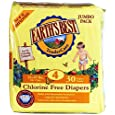 Earth's Best Chlorine-Free Diapers, Size 4, 120 Count (Packaging May Vary)