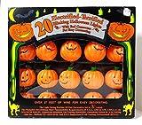 20 Electrified Terrified Blinking Pumpkin Orange Halloween Lights Indoor or Outdoor