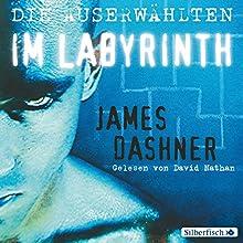 Die Auserwählten im Labyrinth (Maze Runner 1) (       gekürzt) von James Dashner Gesprochen von: David Nathan