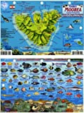 Moorea French Polynesia Map & Reef Creatures Guide Franko Maps Laminated Fish Card