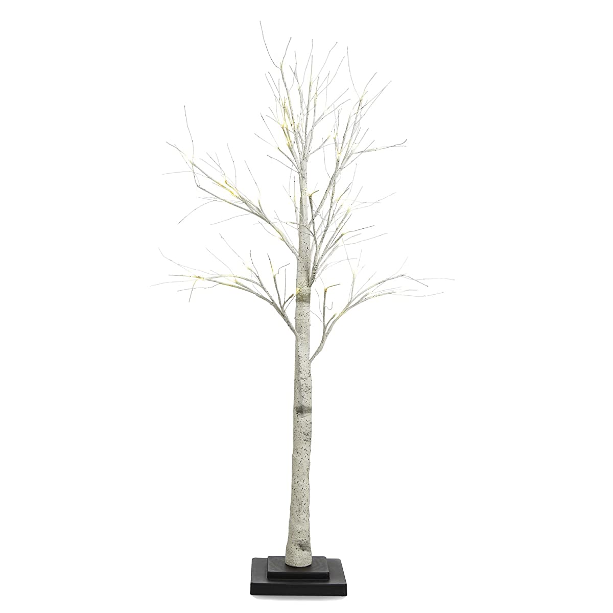 Birch Tree, White LEDs