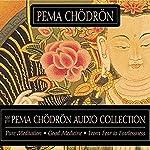 The Pema Chodron Audio Collection | Pema Chodron