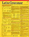 Latin Grammar Card (Grammar Card Guides)