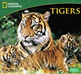 2014 National Geographic Tigers Deluxe Wall