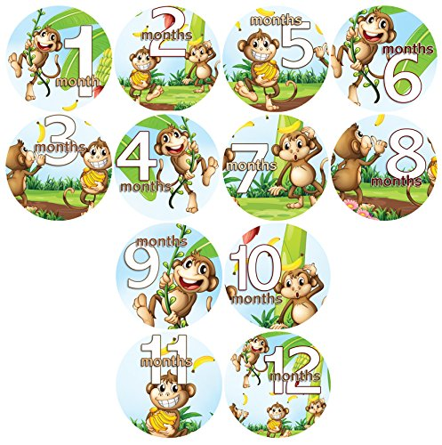 baby monthly belly stickers silly monkeys with bananas stickers baby shower gift photo shower stickers