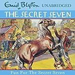 Fun for the Secret Seven: Secret Seven, Book 15 | Enid Blyton