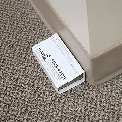 Stick a pest glue traps 75 pack mouse insects and snakes glue boards
