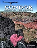 Condor: Spirit of the Canyon