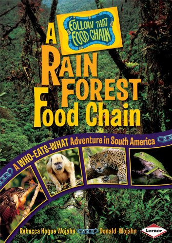 rainforest food chains for kids. rainforest food chains for