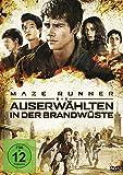 DVD & Blu-ray - Maze Runner 2: Die Auserw�hlten in der Brandw�ste