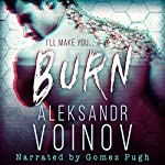Burn | Aleksandr Voinov