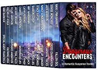 Dangerous Encounters: Thirteen Romantic Suspense Novels by Nikki Lynn Barrett ebook deal