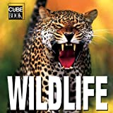 WildLife: Minicube