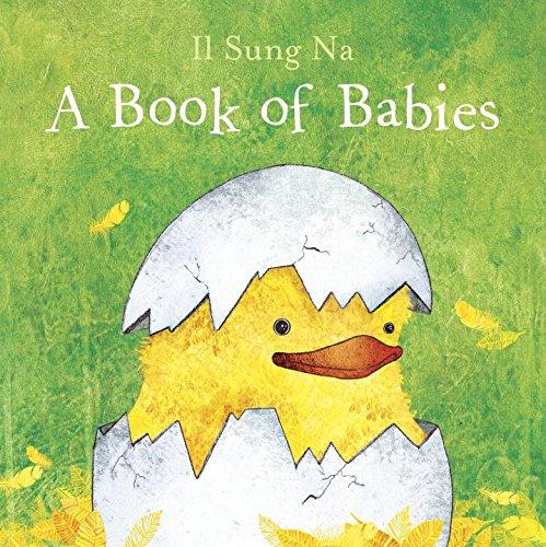 婴儿一本书