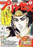 月刊 プリンセス 2013年 01月号 [雑誌]