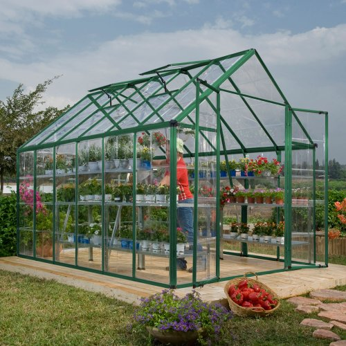 Palram Snap and Grow 8 by 12-Inch Greenhouse, Green