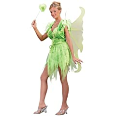 Tinkerbell fairy Costumes for adults