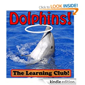 Diving Dolphins! Learn About Dolphins And Learn To Read - The Learning Club! (45+ Photos of Dolphins)