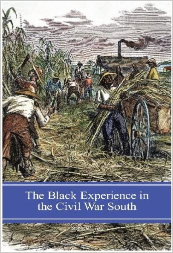 The Black Experience in the Civil War South