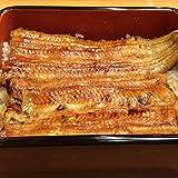 うなぎの蒲焼き 天然 国産 鰻蒲焼ギフト (2尾入) ランキングお取り寄せ