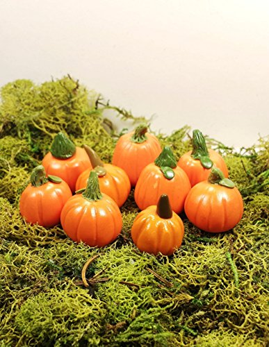 Fairy garden accessories, terrarium decor. Miniature pumpkins. 9 piece set.