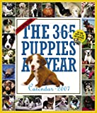 The 365 Puppies-A-Year Calendar 2007