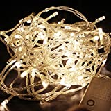 Meiguangyuan10m 33ft 100 Led Bulbs Pretty Indoor Outdoor Fairy String Lights for Wedding Party Christmas LED String Fairy Tree Lights with Memory Function(8 Modes10m 33ft, Warm White)