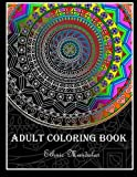 img - for Adult Coloring Book: Ethnic Mandalas book / textbook / text book