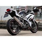 リアルスピード: ステンレス製スリップオンマフラー スラッシュ Ninja250 (EX250L)用